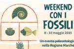 Weekend con i fossili